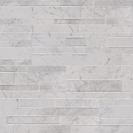Carrara White - Porcelain - Panel - 6X24