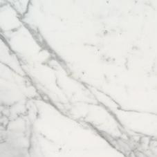 Calacatta - Polished, Honed - 3X6, 6X12, 12X12, 12X24, 18X18