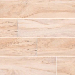 Aspenwood Artic - Glazed - Matte - 9X48