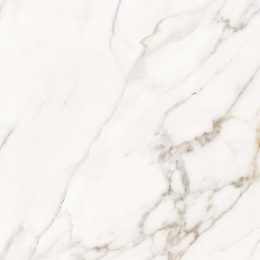 Calacatta Lucca Polished