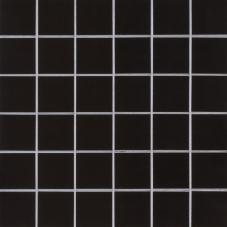 Black Polished 2X2 - Porcelain - Polished - 12X12