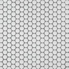 Penny Round Bianco Matte - Porcelain - Matte - 12X12