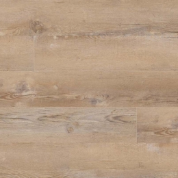 Lime Washed Oak - 2.5mm (Thickness), Glue Down, 7X48